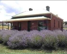 Lavender House in Railway Park - Accommodation Redcliffe