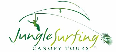 Jungle Surfing Canopy Tours and Jungle Adventures Nightwalks - Accommodation Redcliffe