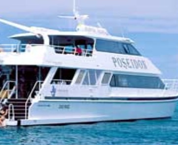 Poseidon Outer Reef Cruises - Accommodation Redcliffe