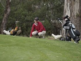 Tasmania Golf Club - The - Accommodation Redcliffe