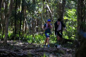 Elephant Trail Race - Accommodation Redcliffe