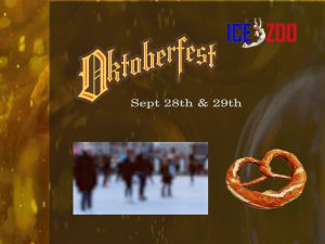 Oktoberfest at Ice Zoo - Accommodation Redcliffe
