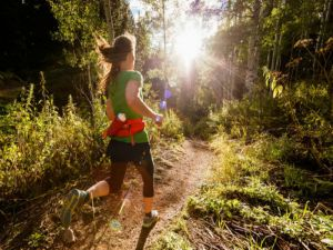 Run Dungog - Accommodation Redcliffe