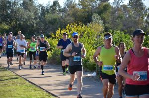 Husky Half Running Festival - Accommodation Redcliffe