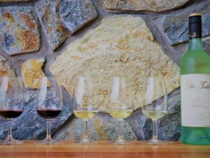 Peter Teakle Wines - Accommodation Redcliffe