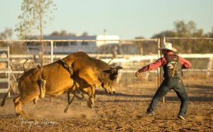 Walgett Charity Bushman's Carnival Rodeo and Campdraft - Accommodation Redcliffe