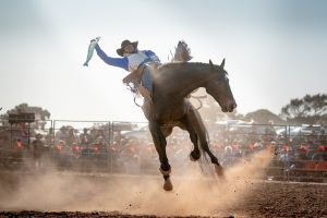 Rodeo by the Sea - Streaky Bay - Accommodation Redcliffe