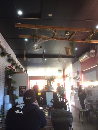 BrisBean Coffee - Accommodation Redcliffe