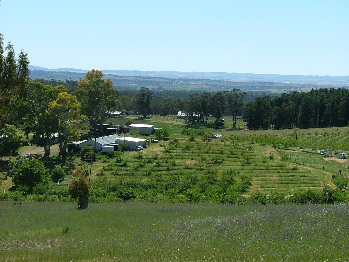 Taralee Orchards - Accommodation Redcliffe