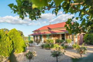 Barossa Shiraz Estate - Accommodation Redcliffe