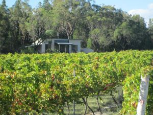 Just Red Wines Cabins - Accommodation Redcliffe